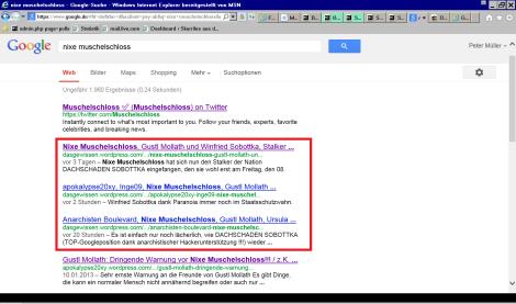 Google 2013 01.18.-a